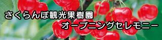 さくらんぼ観光果樹園 オープニングセレモニー